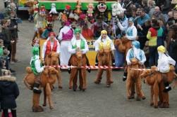 De winnende kamelen van De Crazy Girls
